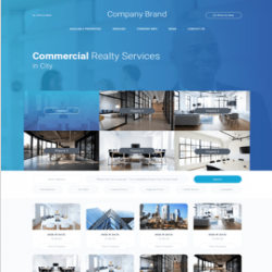 Commercial Reality services